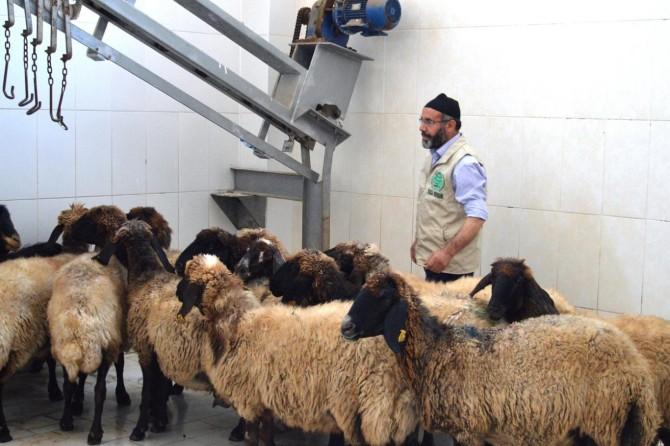 Bitlis Umut Kervanı yardımlarına devam ediyor