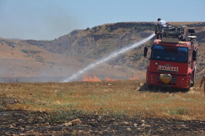 Batman Kozluk'ta elektrik telleri anız yangınına neden oldu iddiası
