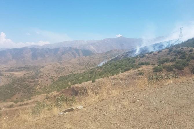 Elazığ Palu'da orman yangını