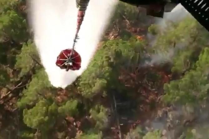 Hatay Antakya'da orman yangınına karadan ve havadan müdahale edildi