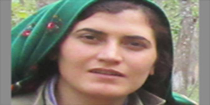 Bingöl'de gri kategoride aranan kadın PKK'li öldürüldü