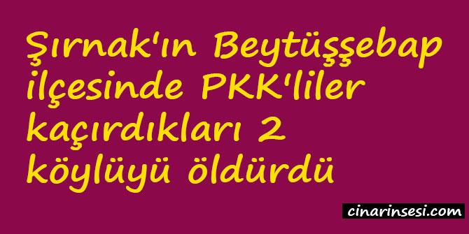 Şırnak Beytüşşebap'ta PKK'liler kaçırdıkları 2 köylüyü öldürdü