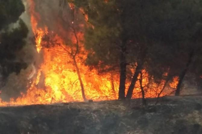 Bodrum'da çıkan yangın henüz söndürülemedi