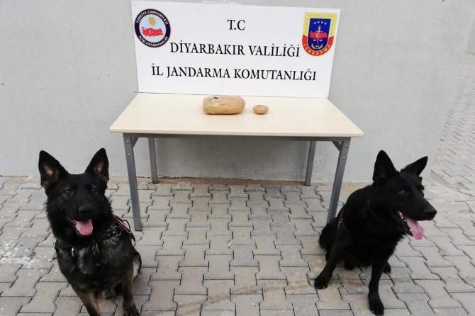 Diyarbakır'da meyve kolisi içinde uyuşturucu bulundu