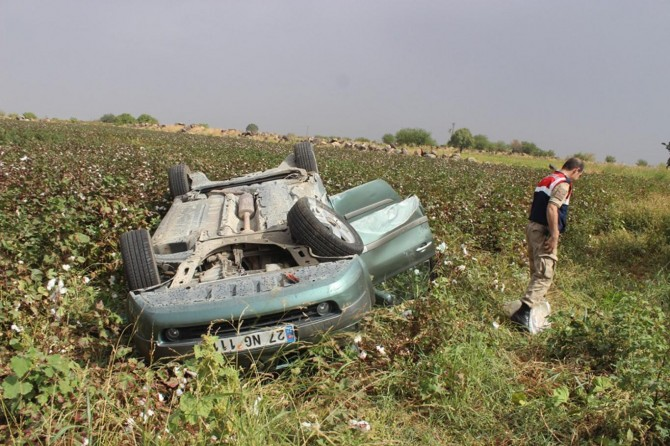 Şanlıurfa Siverek'te trafik kazası: 5 yaralı