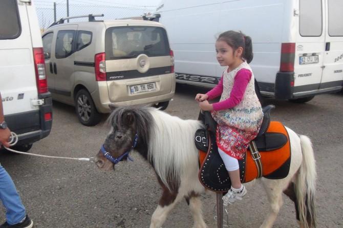 Adıyaman'da midilli atı çocukların ilgi odağı oldu