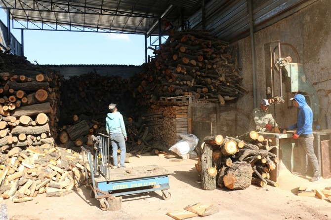 Kaçak odun satışları denetlemesi lazım