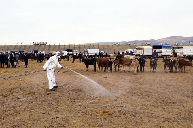 Van Büyükşehir Belediyesinden hayvan pazarına ilaçlama