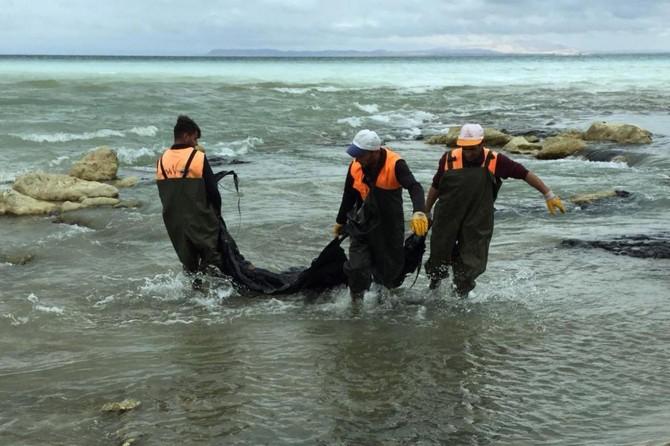 Zift yüklü tanker Van Gölüne boşaldı