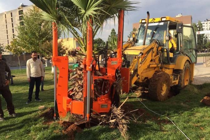 Kızıltepe Belediyesinden ağaç sökme ve dikme makinesi