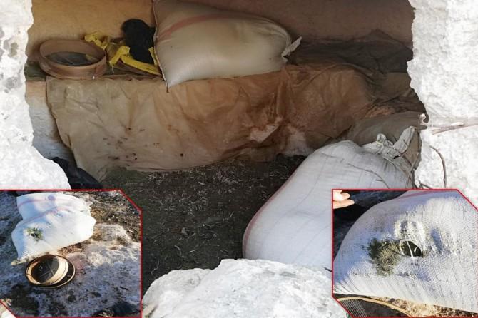 Diyarbakır'da 276 kilogram esrar ele geçirildi