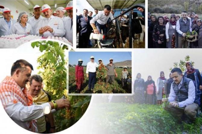 2019'da 16,1 milyar liralık tarımsal destek yapılacak