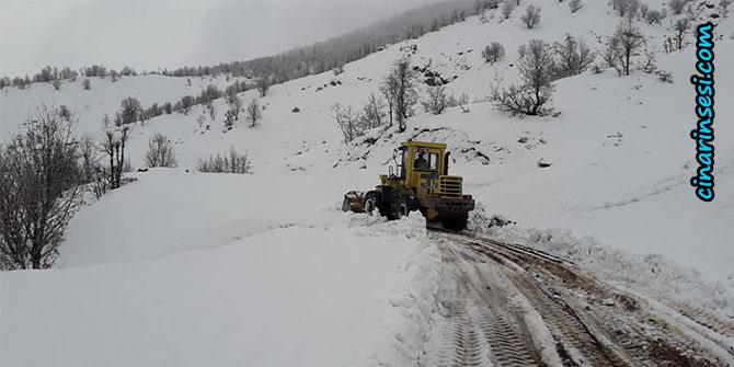 Lice'de kar nedeniyle kapanan köy yolları ulaşıma açılıyor