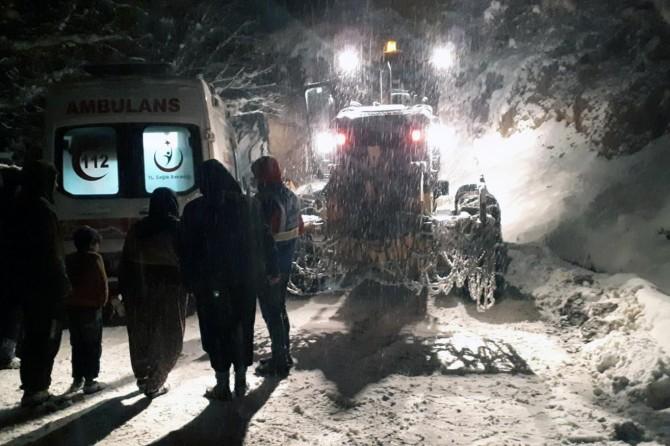 Van Çatak ve Bahçesaray'da köydeki hastaya 5 saatlik çalışmayla ulaşıldı