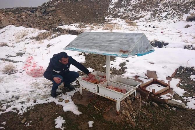 Van Edremit'te doğada yaşayan hayvanlar için yiyecek bırakıldı