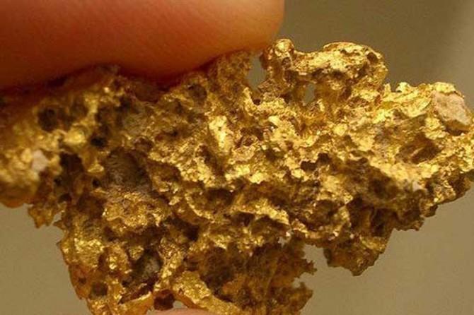 Bakan Dönmez: Türkiye'nin altın rezervi 840 ton
