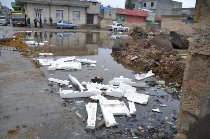 Mahallede biriken kirli su halk sağlığını tehdit ediyor