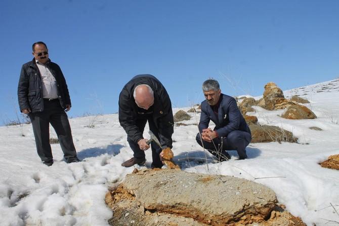 Muş'ta bin 900 metre rakımda fosiller bulundu
