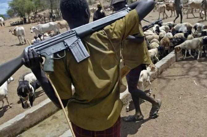 Nijerya'da çatışma: 22 ölü