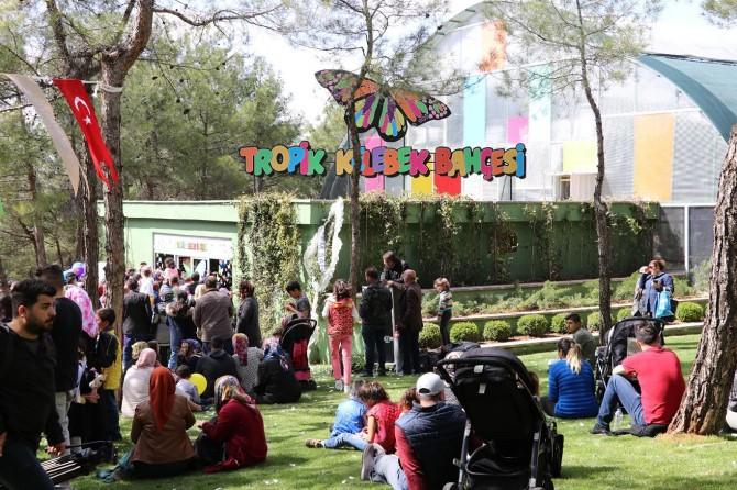 Türkiye'nin ikinci Tropik Kelebek Bahçesi ziyarete açıldı