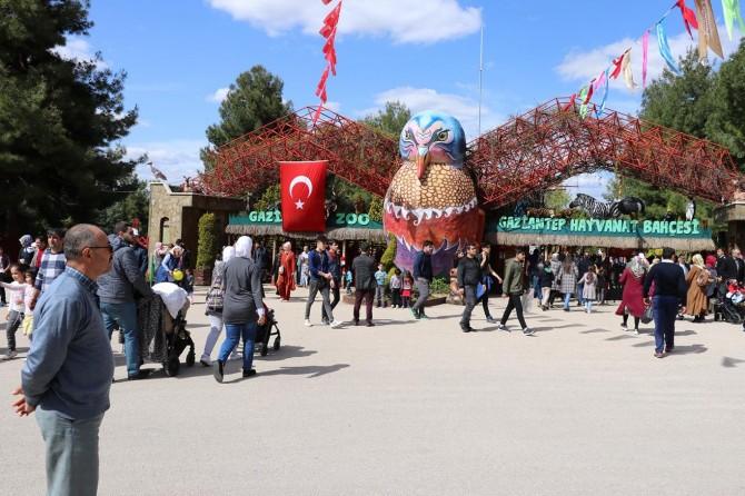 Gaziantep Hayvanat Bahçesini bir günde 93 bin kişi ziyaret etti