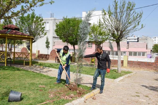 Hilvan'da ağaçlandırma çalışmalarına devam ediyor