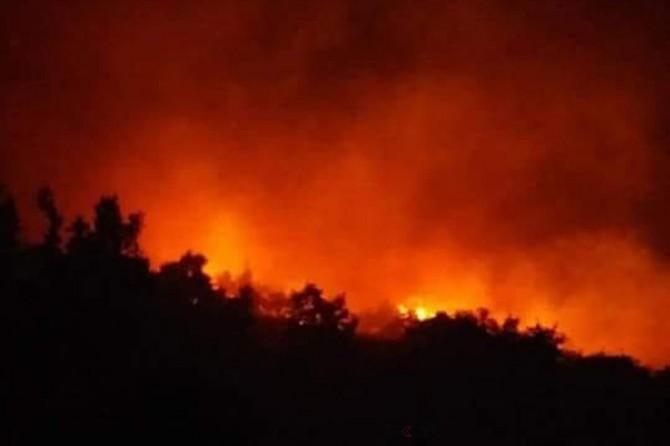 Espiye'de çıkan orman yangını söndürülemiyor