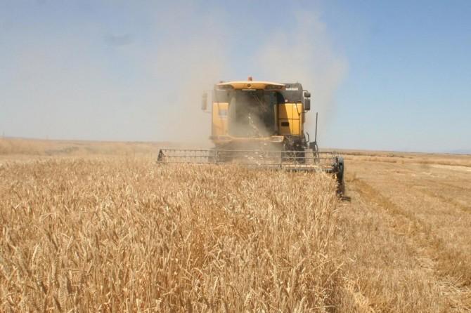 Tarım-ÜFE nisan ayında arttı
