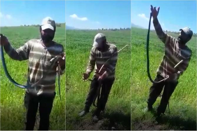 Kovancılar'da ısırmaz deyip eline doladığı yılan tarafından ısırıldı