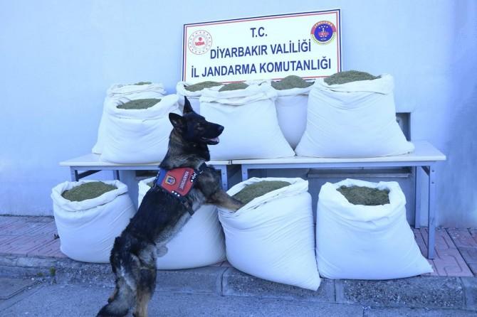 Lice'de satışa hazır yüzlerce kilogram esrar ele geçirildi