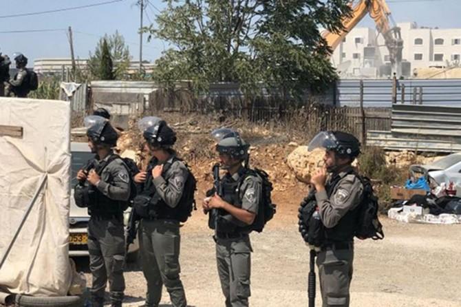 Siyonistên terorîst li Qudsê 5 hezar mal xera kirin
