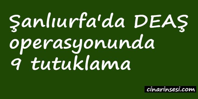 Şanlıurfa'da DEAŞ operasyonunda 9 tutuklama