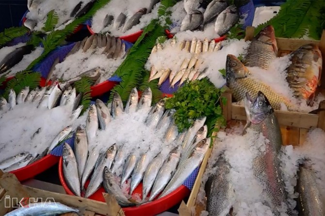 Turkstat announce fisheries production in Turkey