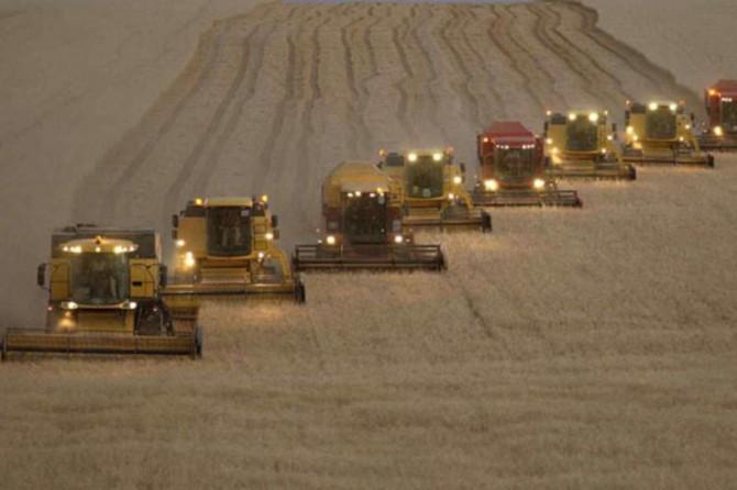 Tarım-ÜFE mayıs ayında yüzde 0,95 azaldı