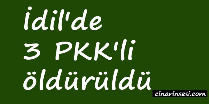 İdil'de 3 PKK'li öldürüldü