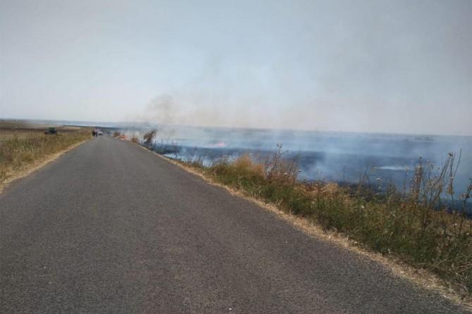 Anız yangını 40 dönüm buğday tarlasının yanmasına sebep oldu