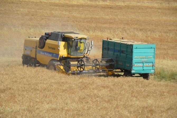 Buğday ile gübrenin fiyatı bir olsun