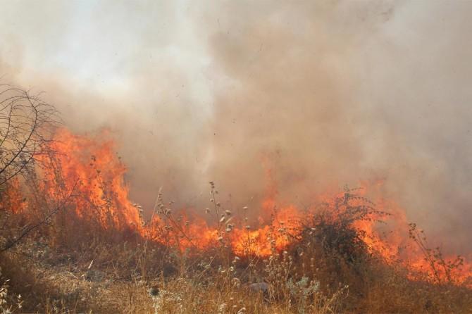 Siirt'te atılan sigara izmaritleri yangınlara neden oluyor