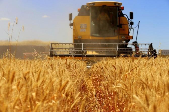 Tarım-ÜFE haziran ayında yüzde 2,97 azaldı
