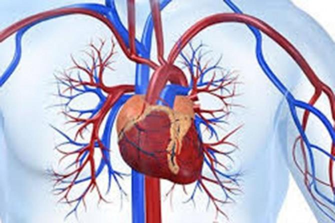 Şeker hastalığı damar yapısını bozuyor