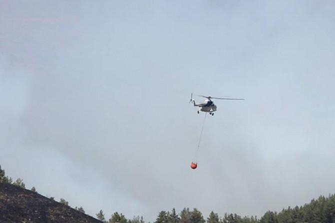 Bursa'da 2 noktada orman yangını devam ediyor