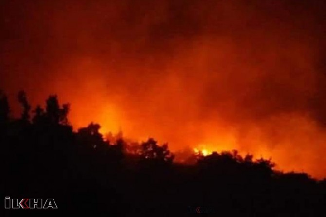 Fire breaks out in Manavgat's forest