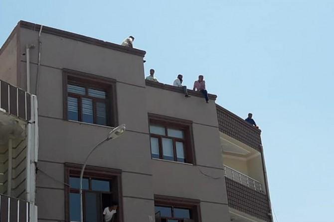 Ceylanpınar'da işçilerden toplu intihar girişimi