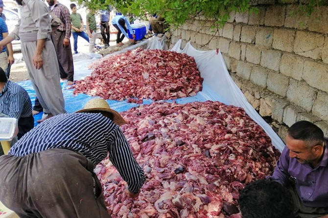 Süleymaniye'de bir köy 140 kurban kesti