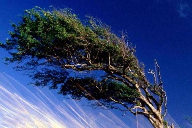 Kuvvetli rüzgâr uyarısı