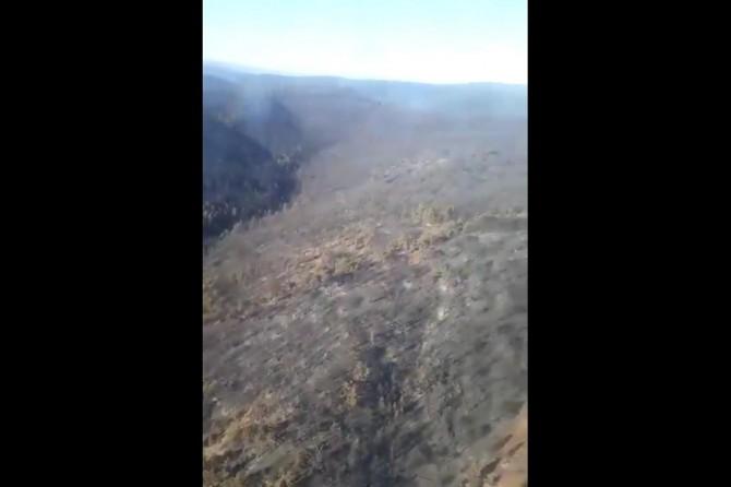 Tavşanlı'daki orman yangını kontrol altına alındı