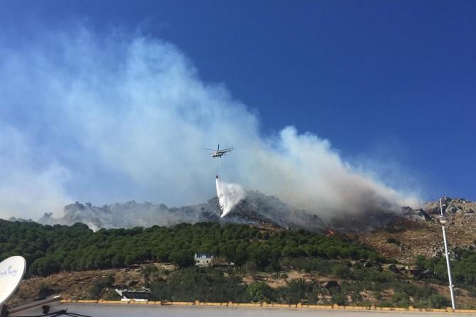Marmara Adası'ndaki orman yangınına ilişkin 2 tutuklama