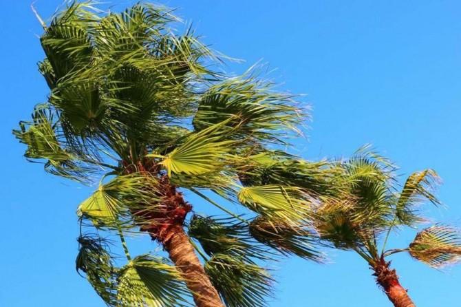 Doğu Anadolu'da kuvvetli rüzgâr uyarısı