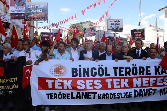"""Bingöl'de """"Annelere destek, PKK'ya lanet"""" yürüyüşü düzenlendi"""