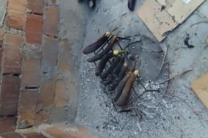 Diyarbakır'da babagannuş pişirimde patlama: 4 yaralı